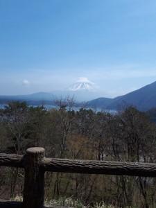 本栖湖、この地点からの富士山が1000円札の裏に使われている勇姿。去年とり損ねたからリベンジ。80キロ地点付近。私のレース展開はこの頃から暗雲が…