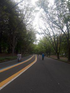 今朝の公園。午前仕事ないからジョギング。これくらいの人影なら飛沫もないはず。けやきがきれい。